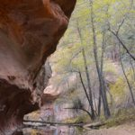 Call of the Canyon, Oak Creek